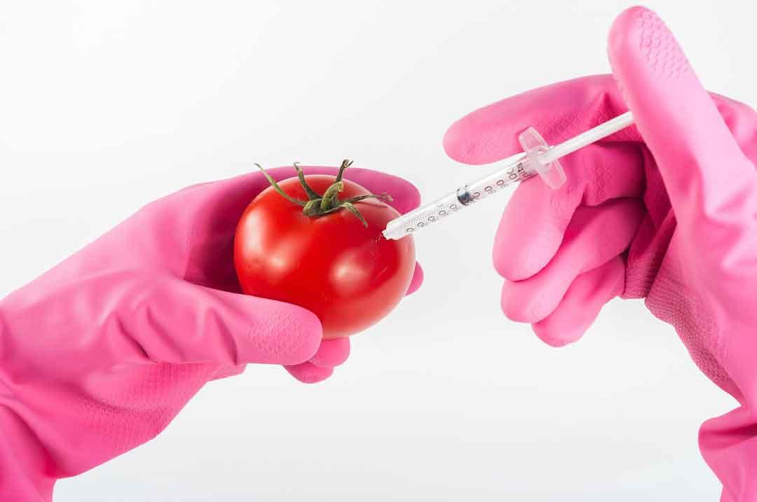 bahaya bahan kimia bagi kesehatan - posciety
