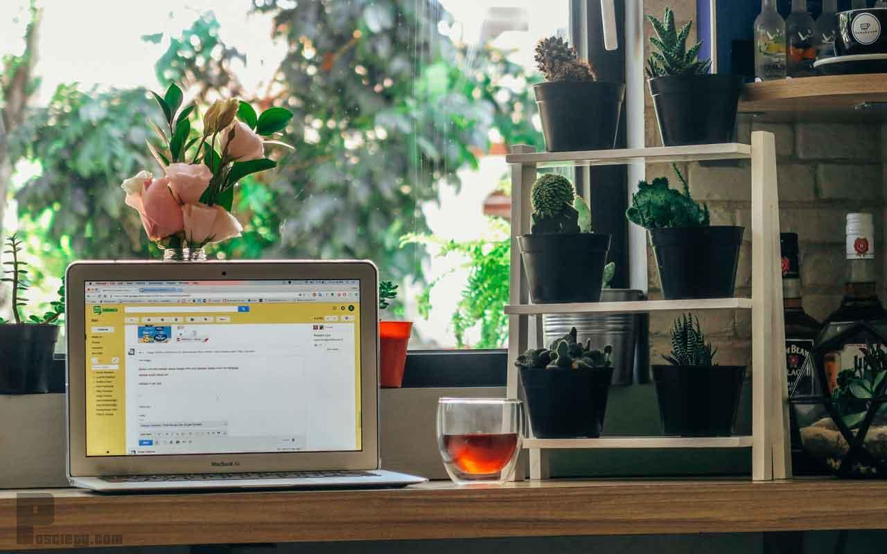cara ganti nama sender gmail - posciety