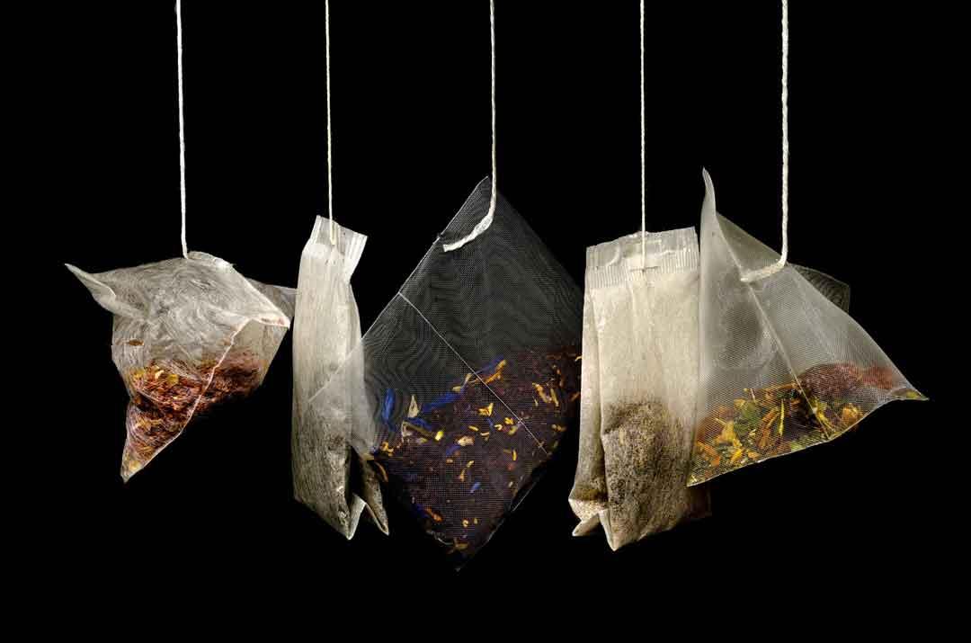 jenis teh dan manfaat teh - posciety
