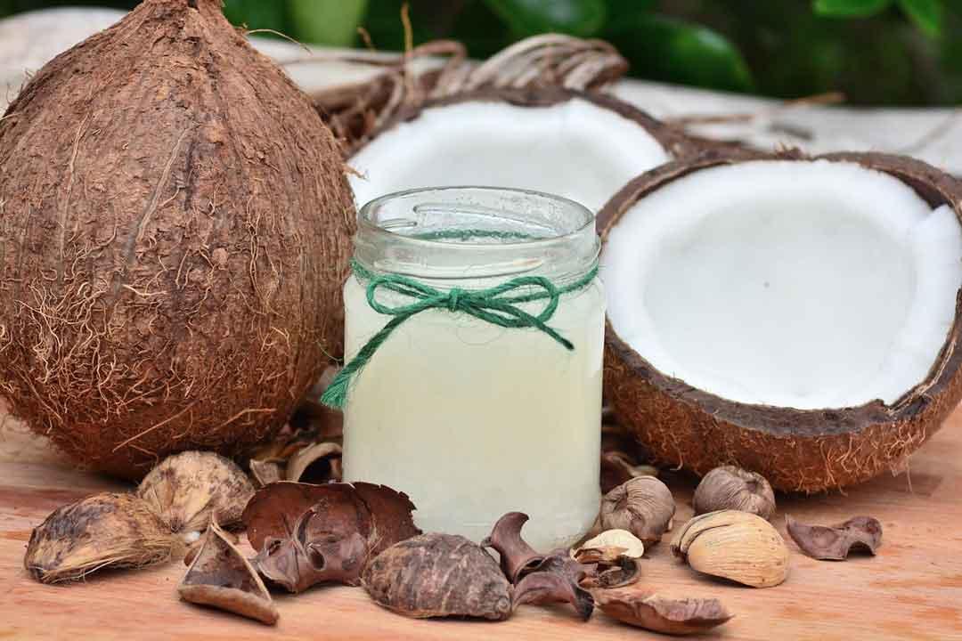 manfaat daging air kelapa - posciety