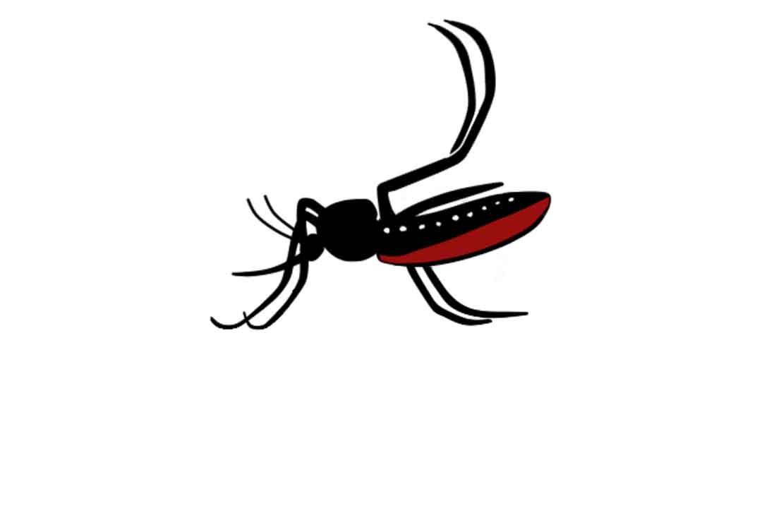 pengertian virus zika - posciety
