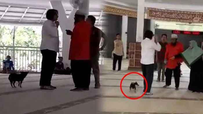 wanita bawa anjing ke masjid - posciety
